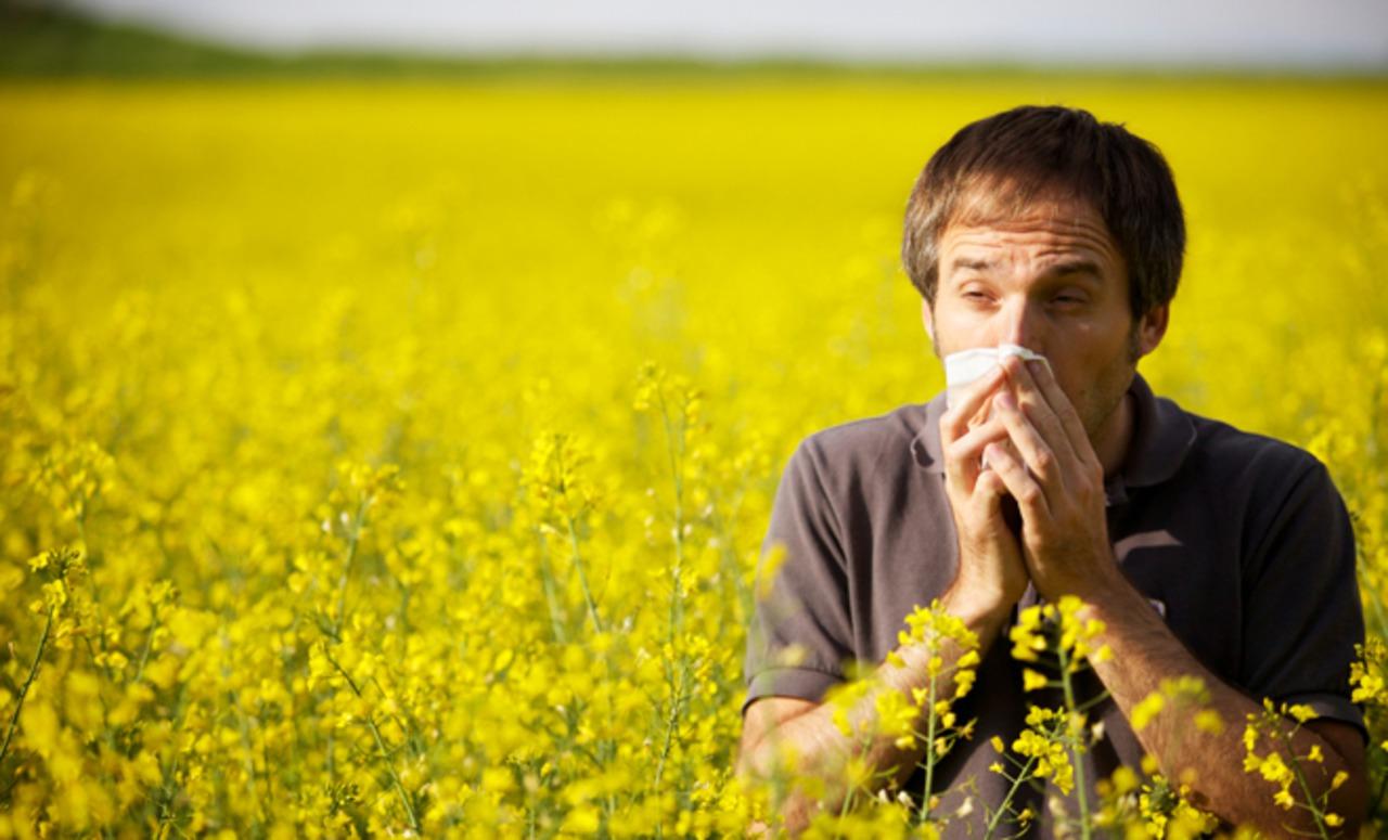 kak uznat est li u vas allergiya - Как узнать есть ли у вас аллергия