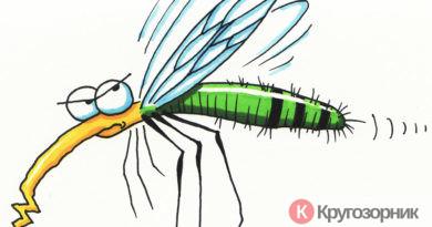ot komarov na prirode 390x205 - От комаров на природе